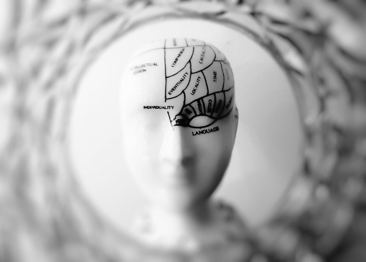 Conexão cérebro x intestino: você sabia que afeta o rendimento profissional e pessoal?